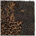 Leopard-print Scarf - Brown - Saint Laurent Scarves