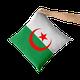 Algérie coussin oreiller décoratif coussin couvre taie d'oreiller coussins pour canapé pour chambre