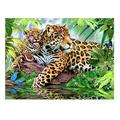 JIAORLEI 1000Pc Jigsaw Puzzle Adults Jigsaw Puzzles Puzzle Mini Smart Puzzle Panther Kids Education Toys Puzzles Educational Games