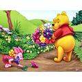 TTXD Jigsaw Puzzles 1000 Piece for Adult,Winnie the Pooh,Educational Intellectual Decompressing Toy Fun Family Game for Kids Adults Challenging Jigsaw Puzzles Gift 75 x 50CM