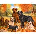 YXLY Animal Dog Jigsaw Puzzles For Adults Jigsaw Puzzle 1000 Piece Puzzle Sets For Family, Puzzles Educational Games, Brain Challenge Puzzle For Kids Childrens 75X50Cm