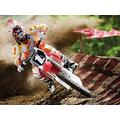 Murosn Jigsaw Puzzles For Adults 1000 Pieces Wooden Motocross. poster Kids Puzzle Toys Home Decoration Gifts