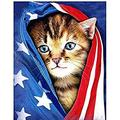 TTLDB Jigsaw Puzzles 1000 Piece, Wooden Landscape Puzzle, For Adult And Kid Educational Toy Wall Painting Home Decor- Invisible Flag Kitten Jigsaw