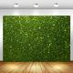 Arrière-plan de photographie murale en herbe verte Flash, fête d'anniversaire, arrière-plan de