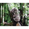 WAFJJ Jigsaw Puzzle Koala The Wooden Puzzle 1000 Pieces Jigsaw Puzzles Adult Children S Educational Toys Birthday size: 75*50 cm