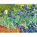 Jigsaw Puzzles, 1000 Piece Wooden Landscape Puzzle, For Adult Kids Decompression Puzzle Nice Gifts - Van Gogh'S Iris Flower Paints Personalize Jigsaw