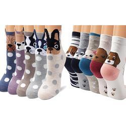 Ladies Dog Socks 5-Pack - Front Face Polka Dots x2
