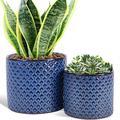 Fivepot 16CM Large Ceramic Flower Pots and 13.5CM Succulent Planters Round Garden Pot Blue Drain Hole Set of 2
