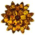 SA Brooches Baltic Amber and Sterling Silver 925 Cognac Flower Leaf Brooch pin Jewellery Jewelry