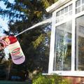 Window Shine Window Cleaner by Coopers of Stortford