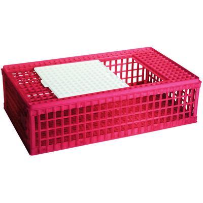 Caisse de transport pour volaille, en plastique, 1 porte