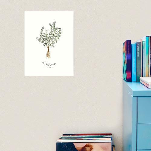 Thymian-Kraut, Thymian-Pflanze, Thymian-Druck, Thymian-Kunstdruck Kunstdruck