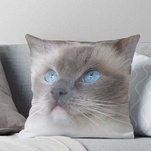 Flauschige Ragdoll-Katze Kissen