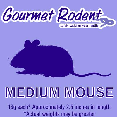 Frozen Medium Mouse, Count of 10, 10 CT
