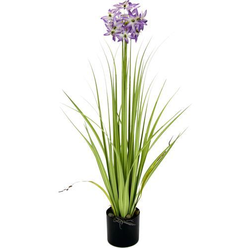 I.GE.A. Kunstblume, im Topf weiß Künstliche Zimmerpflanzen Kunstpflanzen Wohnaccessoires Kunstblume