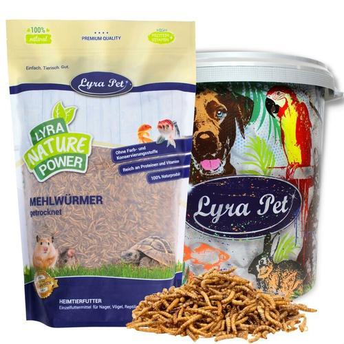 5 kg ® Mehlwürmer in 30 L Tonne - Lyra Pet