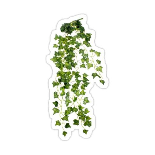 ivy sticker Sticker