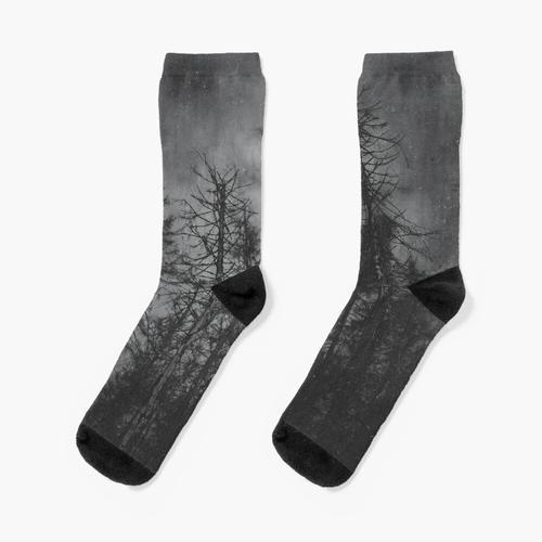 Transmission Socken