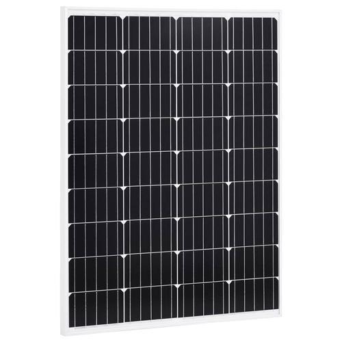 vidaXL Solarmodul 100 W Monokristallin Aluminium und Sicherheitsglas