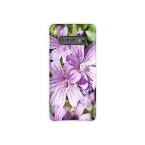 Malve Samsung Galaxy S10 Plus Case