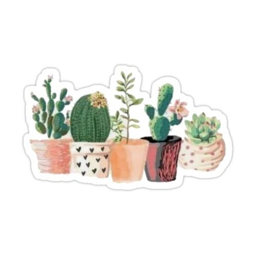 Cute Cactus Sticker Sticker