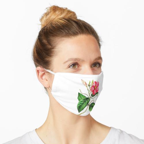 Dipladenia In Blooming Pink Maske