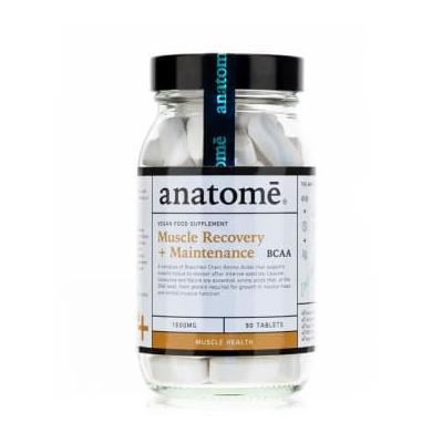 Anatome - Muscle...