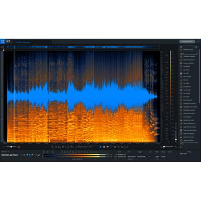 iZotope RX 8 Adv UG RX Elements/...