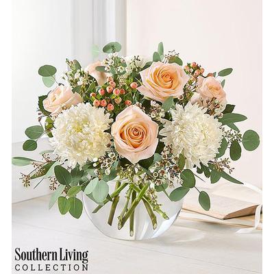 Peach Splendor by Southern Living® Peach Splendor by Southern Living by 1-800 Flowers