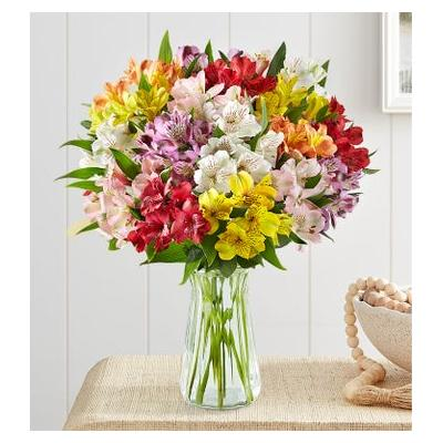 Peruvian Lilies 100 Blooms with Clear Vase by 1-800 Flowers