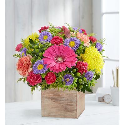 Vibrant Jewel Bouquet Medium by 1-800 Flowers