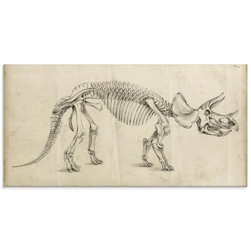 Artland Glasbild »Dinosauria Lehre II«, Dinosaurier (1 Stück)