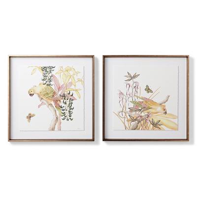 Blushing Parrots Giclee Prints -...