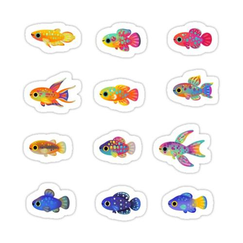 Killifish! Sticker
