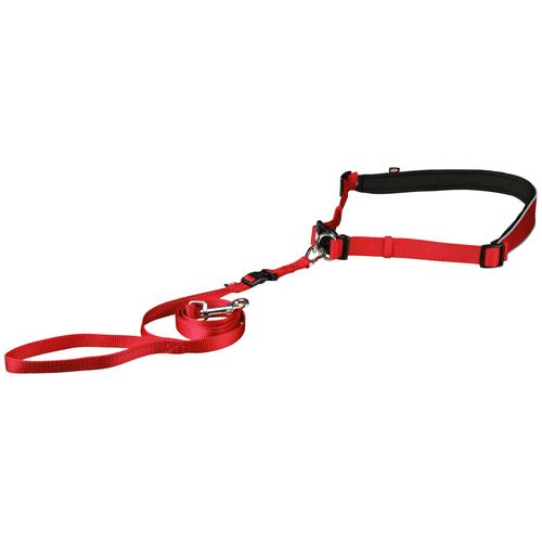 TRIXIE Hundeleine, mit Bauchgurt 60-130 cm, 1,2 Meter rot Hundeleine Hundeleinen Hund Tierbedarf