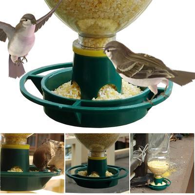 Graines d'oiseaux sauvages autom...
