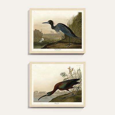 """Marsh Watch Art 25"""" x 31"""" - Ballard Designs"""