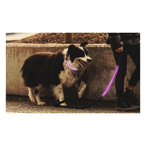 Leuchtendes Hundehalsband: Hundehalsband/ 1x Rosa/ XL