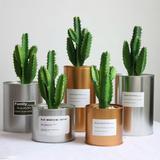 Cactus en plastique artificiel S...