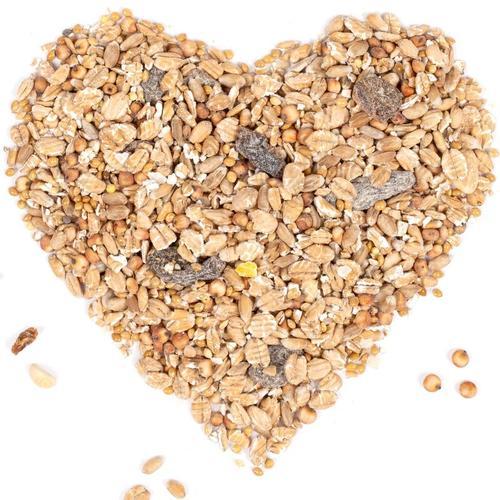 20 kg Lyra Pet® Fettfutter HK Bulgarien