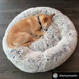 Mr. Peanut's OrthoPlush Orthopedic Cat & Dog Bed, Gray, Small