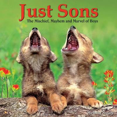 Willow Creek Press Just Sons Book