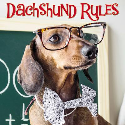 Willow Creek Press Dachshund Rules Book