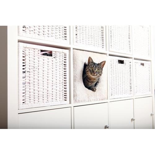 TRIXIE Tierbett passend für z.B. IKEA Kallax oder Expedit, Katzenhoehle weiß Katzenkörbe -kissen Katze Tierbedarf