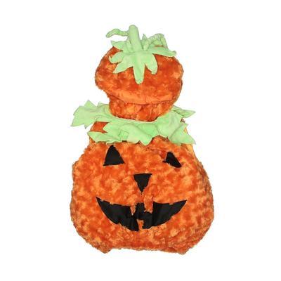 Underwraps Costume: Orange Accessories - Size Large