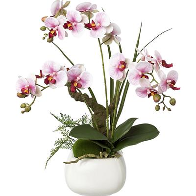 Phalaenopsis, real touch hauteur 460 mm