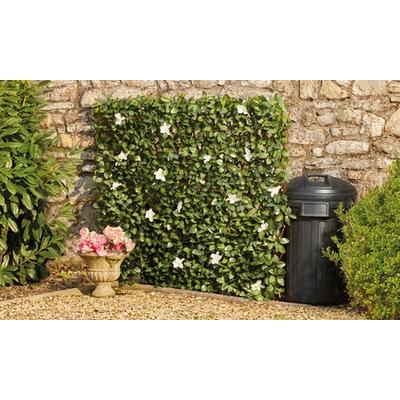 Artificial Hedge Trellis: Ivy/One
