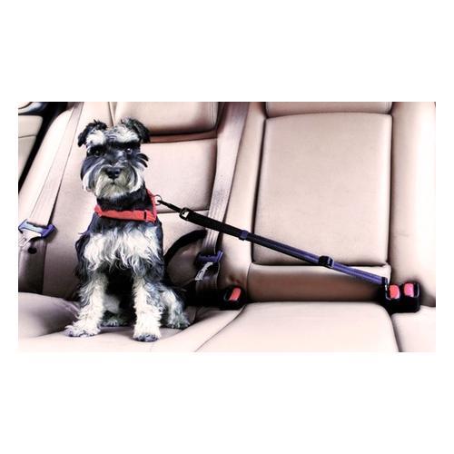 Sicherheitsgurt für Haustiere: 1