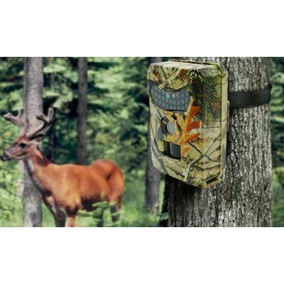 Wildlife Camera: Wildlife Camera...