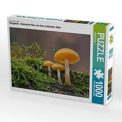 Pilzgalerie - Heimische Pilze von ihrer schönsten Seite Foto-Puzzle Bild von Beate Wurster Puzzle